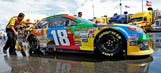 Beaming bridesmaid: Kyle Busch pleased to finish second