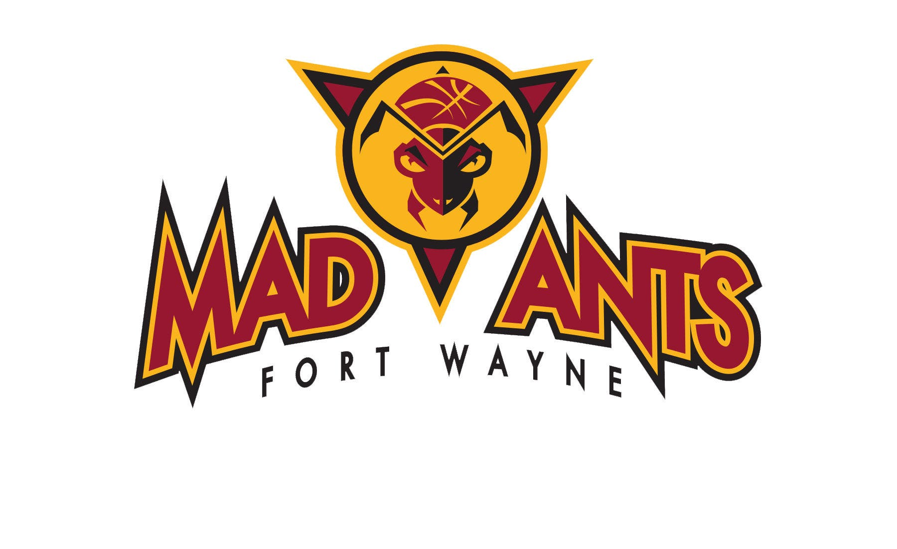 Fort Wayne Mad Ants Coach Steve Gansey Earns Coach of the Month