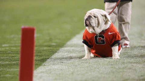 UGA - Georgia Bulldogs
