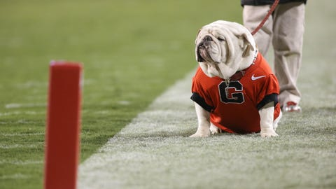 UGA - Georgia Bulldogs