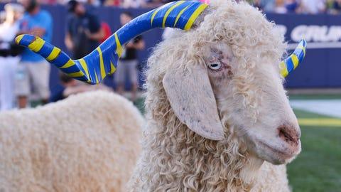 Bill the Goat - Navy Midshipmen