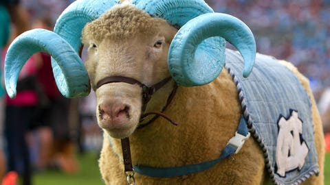Rameses - North Carolina Tar Heels