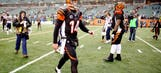 Should Andy Dalton receive all the blame for the Bengals' collapse?