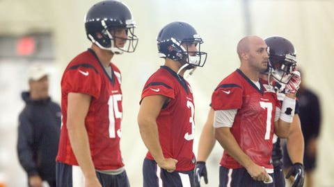 Brian Hoyer and Ryan Mallett (Houston Texans)