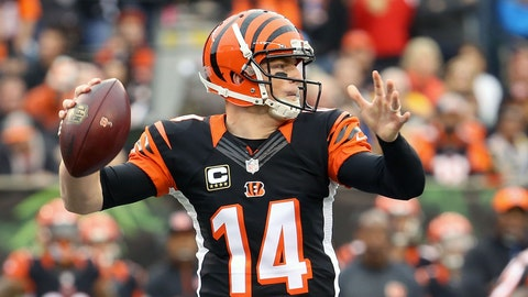 The Cincinnati Bengals will win the AFC