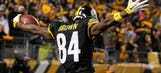 Antonio Brown thanks teammates, Steelers' fans for 'unforgettable season'