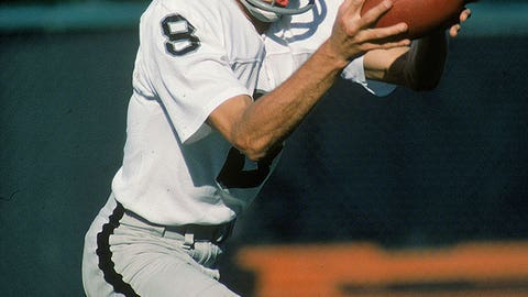 Ray Guy, punter