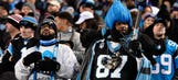 'We are a family': Panthers fans tell us why we should root for them