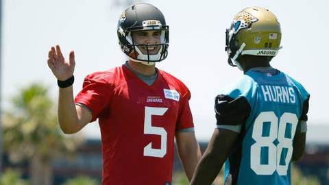 Jacksonville Jaguars: inexperience