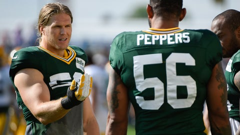 OLB Julius Peppers, Green Bay Packers