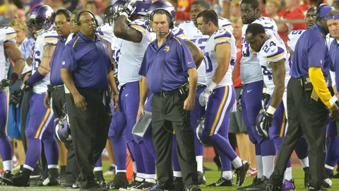 Minnesota Vikings: 15