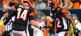Dolphins at Bengals live stream: How to watch online