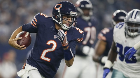 Brian Hoyer, Chicago Bears