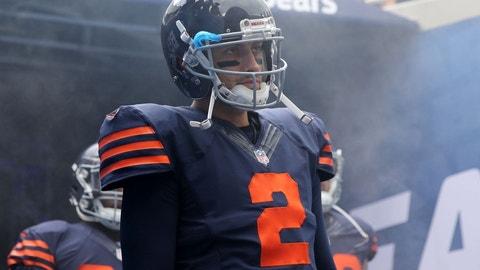 QB Brian Hoyer (Bears)