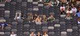Jets continues to leave fans at a loss for words