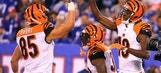 Can the Cincinnati Bengals Still Make the Playoffs?