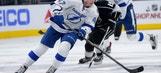Tampa Bay Lightning Year In Review: Joel Vermin