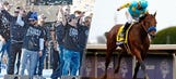 SI's 'Sportsman of the Year' vote shows battle between Royals and American Pharoah